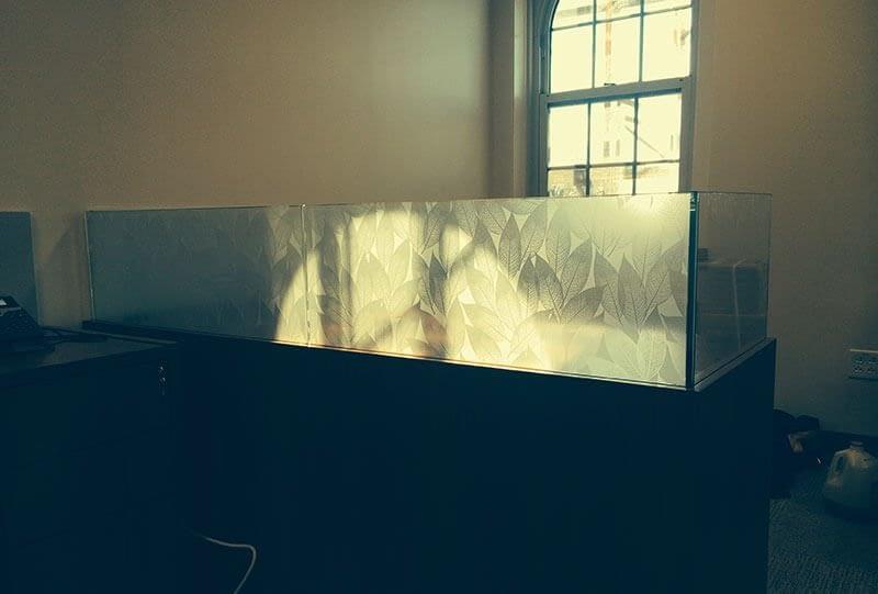 Decorative Window Film 5